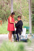 Surprise Proposal - Bryce-45